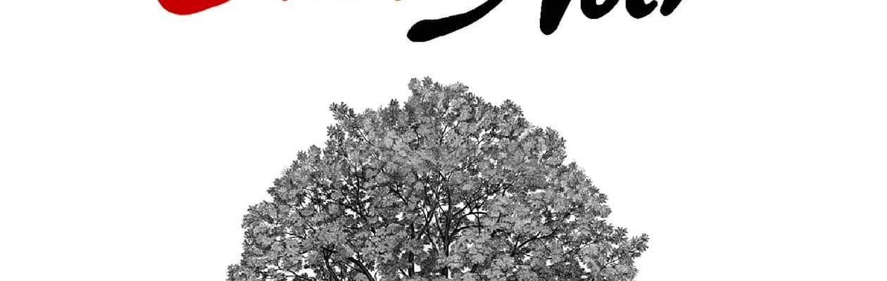 Théâtre du chêne noir avignon